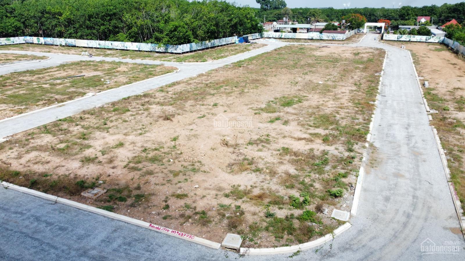 dự án bến cát city zone